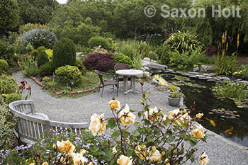 Well known garden photographer saxon holt s photographs of the garden