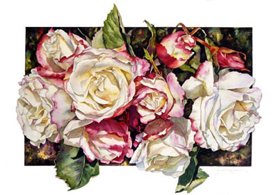 Botanical print of Double Delight Rose by Sally Robertson