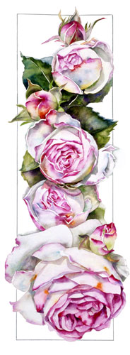 Sally Robertson Botanical print of Rose Eden