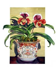 Lady Slipper Print